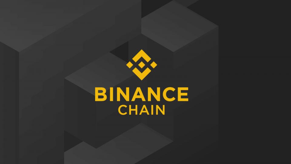 Binance Custom Blockchain