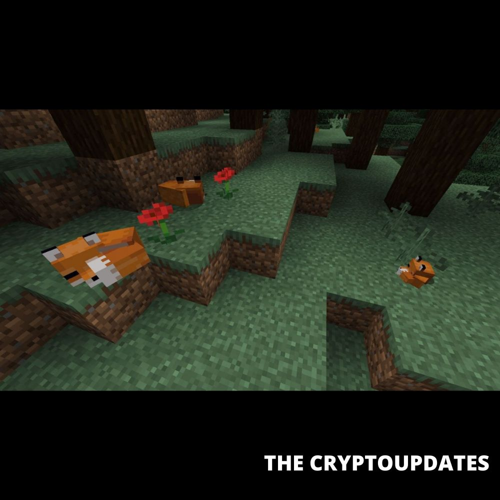 ways to attack fox