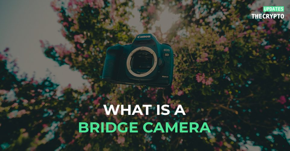 What is a bridge camera